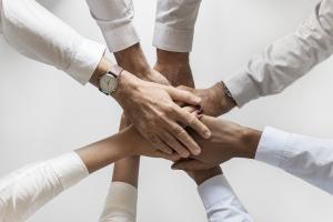 Koromiro teambegeleiding en teamcoaching